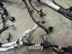 3.5L Engine Wiring Wire Harness Fits 15 2015 16 2016 17 2017 Ford Expedition