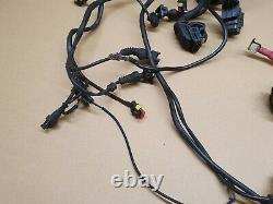Ducati Multistrada 1000S DS Wiring loom harness, Complete, Fits 2003 2006