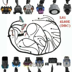 Fits 1997-2006 DBC LS1 Standalone Wiring Harness With 4L60E 4.8 5.3 6.0 Vortec USA