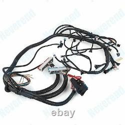Fits 1997-2006 Vortec DBC LS1 Standalone Wiring Harness with T56 4.8 5.3 6.0 USA